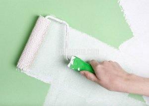 Giá rulo lăn sơn nước cách chọn mua hiệu quả